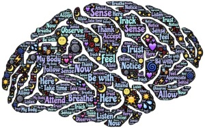 Mindful brain